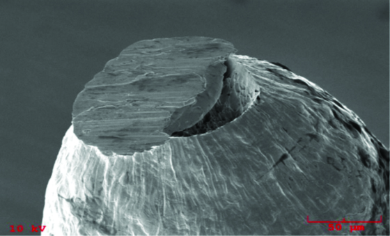 SEM Image of fracture on  Fine Wire